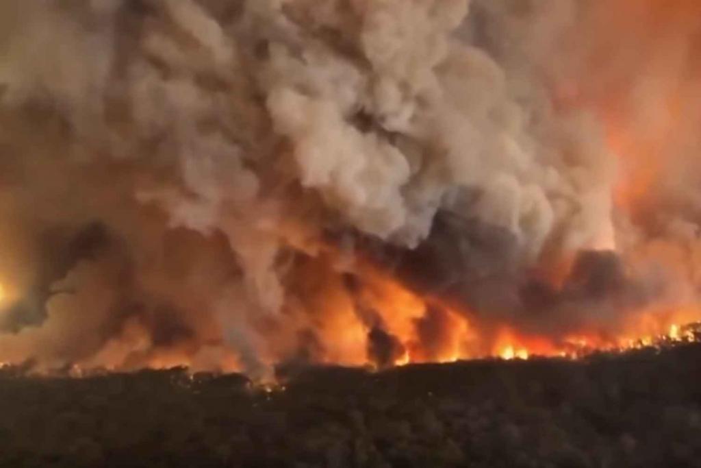 Bushfire January 2020